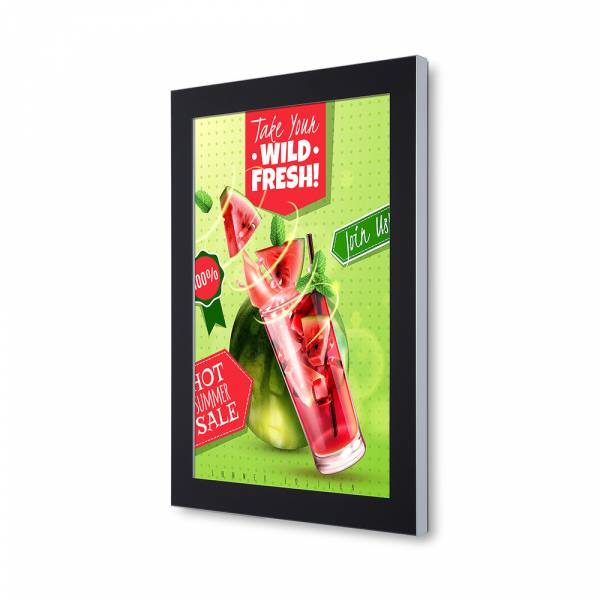 Outdoor Premium Poster Case 70x100