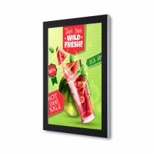 Premium Outdoor Poster Case