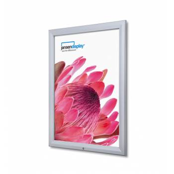 Lockable Outdoor Poster Case 762x1016